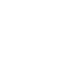VYV International Assistance